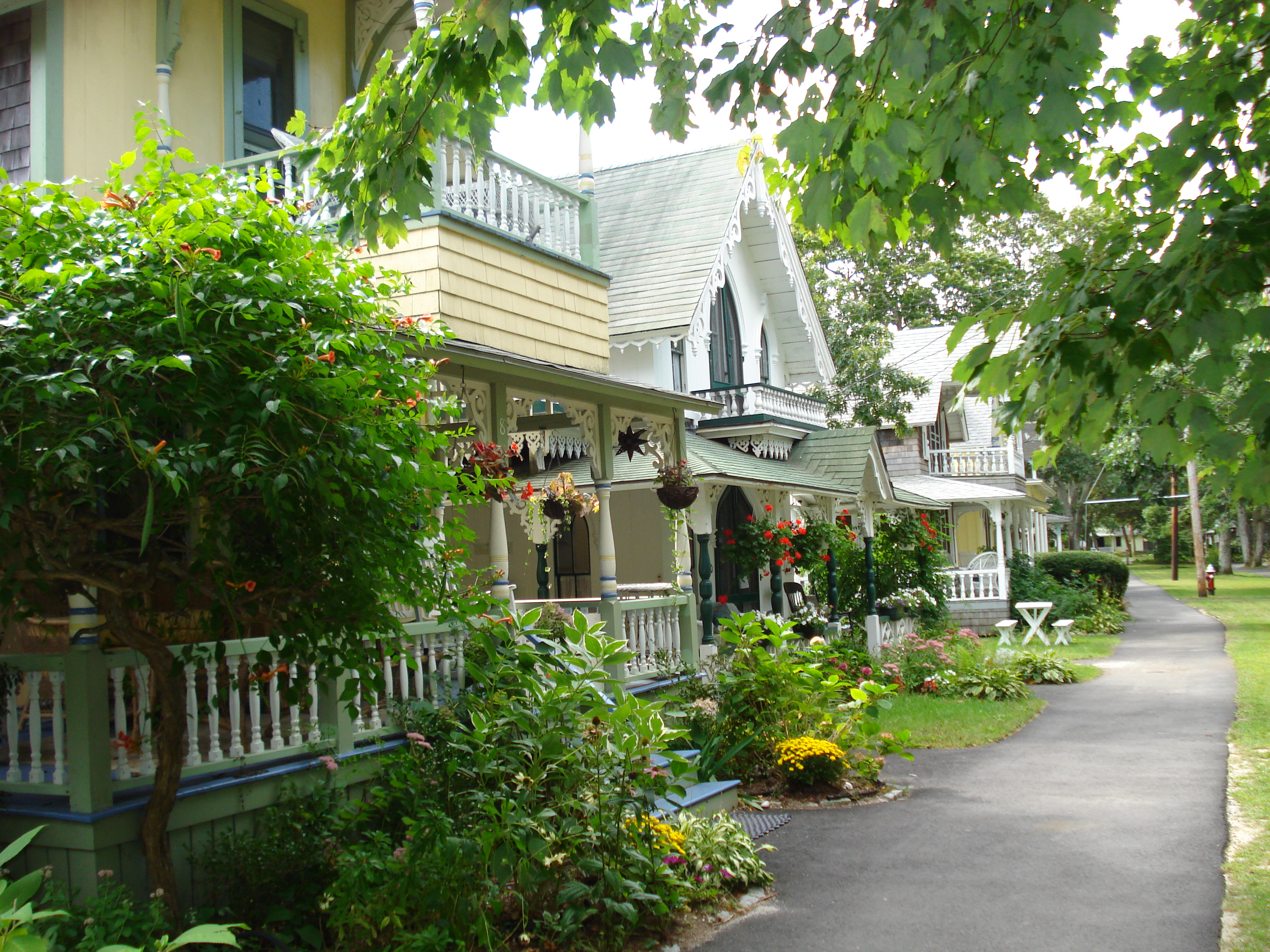 Daytrips falmouth bed breakfast association for Martha s vineyard fishing charters