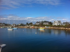Great Harbor Woods Hole