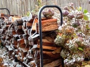 Sudden snow makes a single November day of beauty