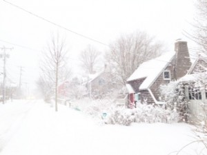 Woods Hole, Falmouth in snow