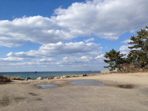 Stoney Beach review, Woods Hole